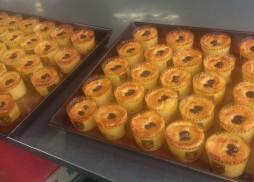 sweetpotato PL